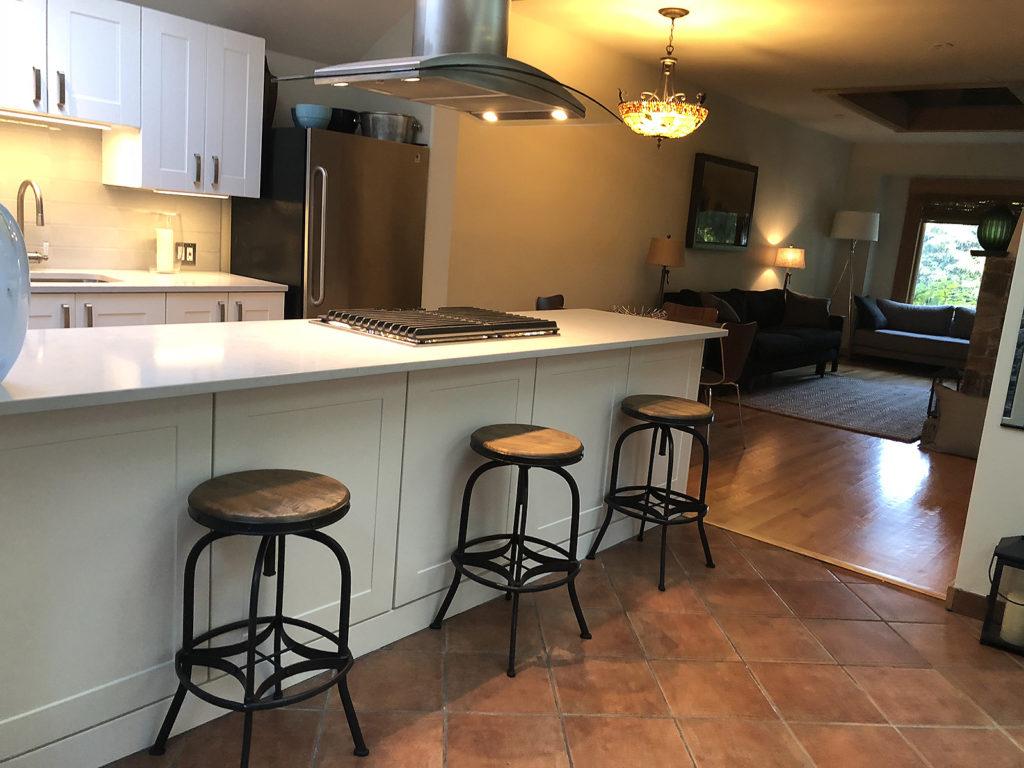 williams-Noe-valley-kitchen-00011